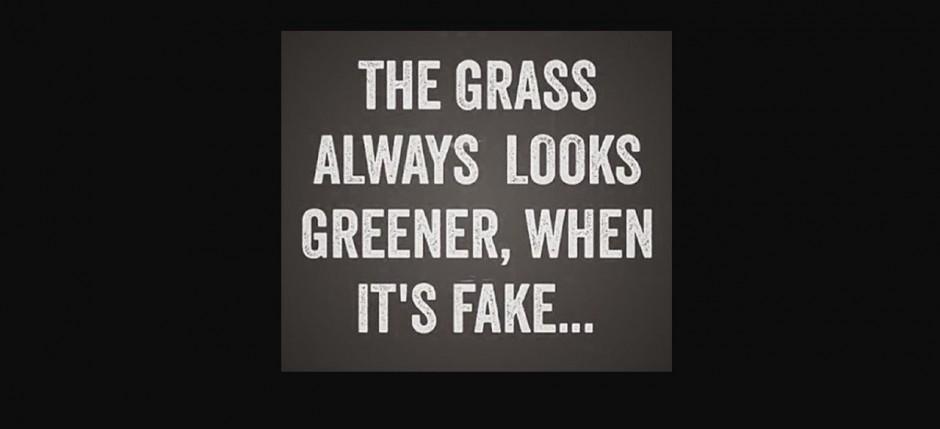 The grass2